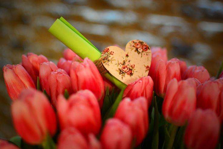 Flori si scrisori