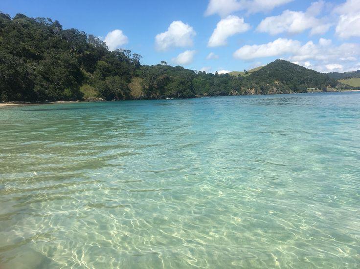 Whale Bay, Matapouri