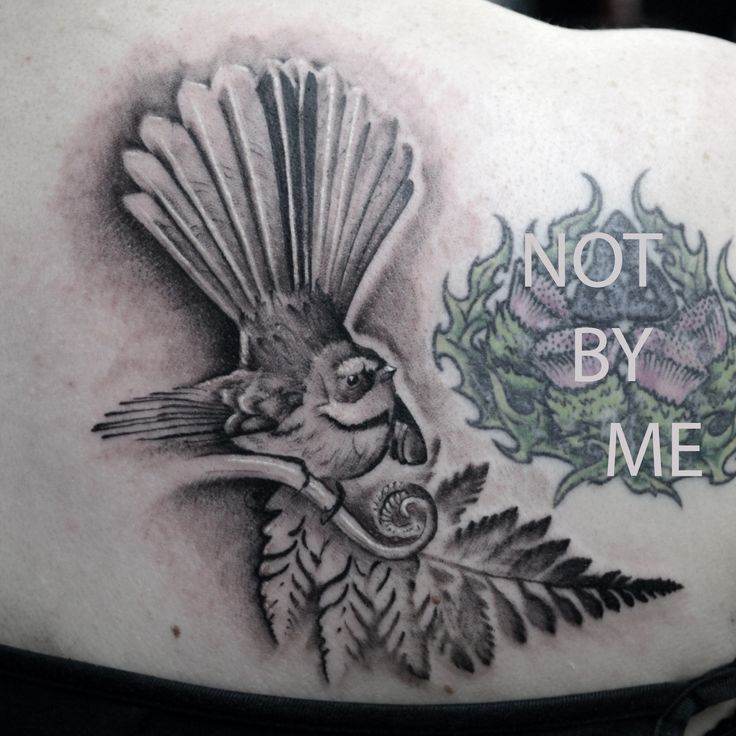 Fun little fantail bird tattoo! if you would like to get tattooed by me please contact the studio or pop in! info@stxiii.com