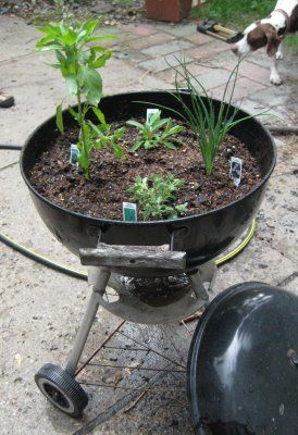 When there's no hope for cleaning your grill turn it into a planter!  Junk Mail Gems: Recycled Planter Roundup!