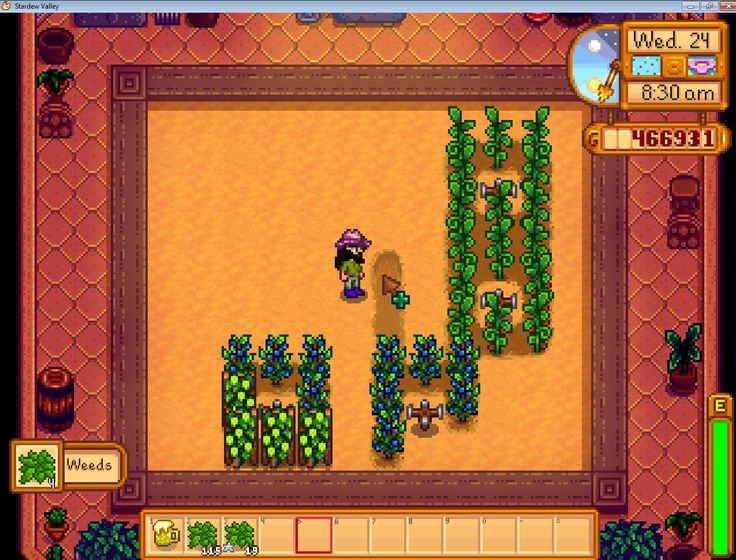 Stardew Valley in greenhouse I have weed