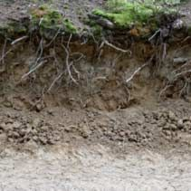 ground,textures,seamless,cliff-soil