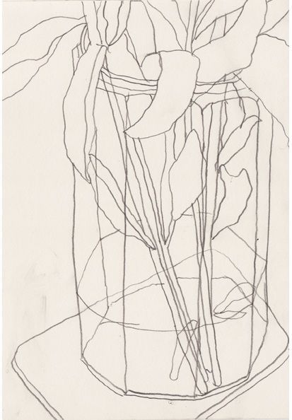 Contour Line Drawing Of A Flower : Best images about contour drawing on pinterest