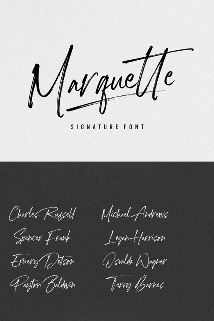 Download Marquette Signature Font in 2020 Signature