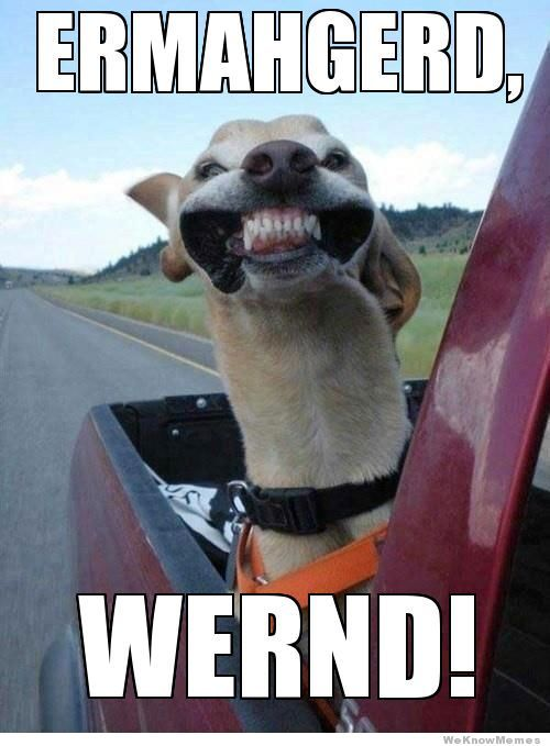Ermahgerd!!! Lol!!! Call **MyVi2 from your cell phone, it is a free call!