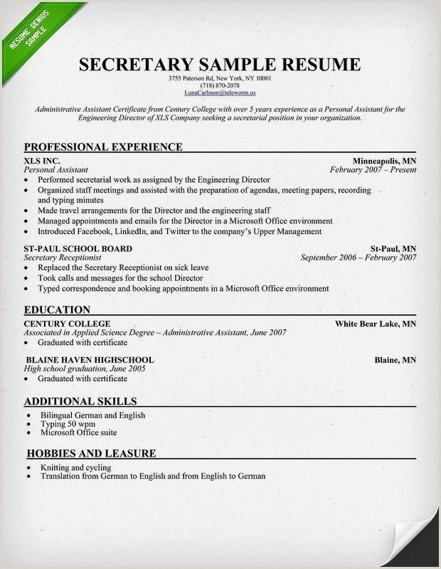 Resume Example With Headshot Photo Cover Letter 1 Page Word Resume Design Diy Cv Example Resume Examples Cover Letter For Resume Basic Resume Examples