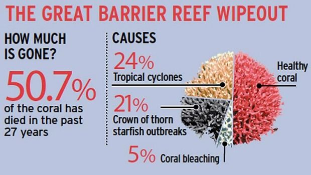 Reef wipeout. Update:- March 2016. The most pristine parts of the Great Barrier Reef are in the grip of the worst coral bleaching event in history, scientists say.