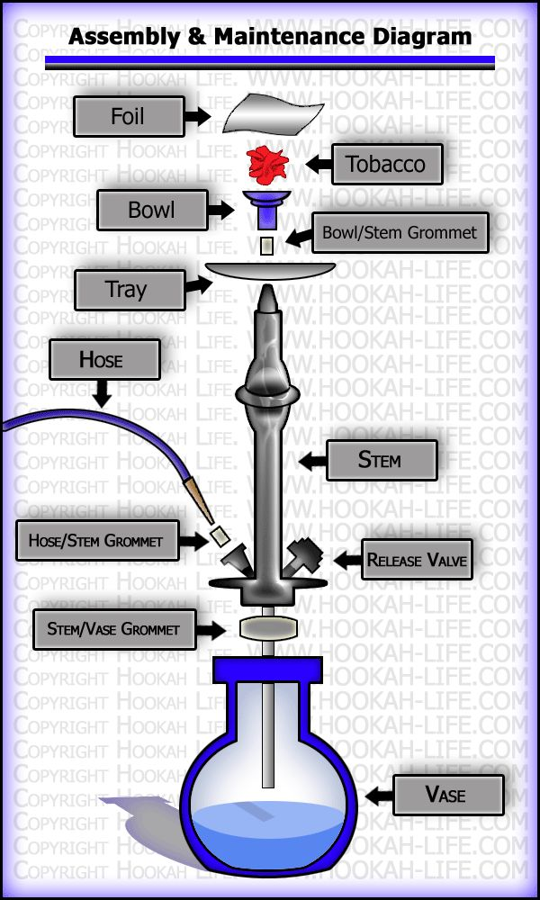 Hookah Assembly Diagram!  Come visit us today for Happy Hour and get $5 OFF of your bill!  Come to Lux Lounge in West Bloomfield, MI to relax with friends at a premiere hookah lounge in an upscale atmosphere!  Call (248) 661-1300 for more information!