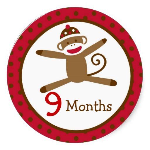 Sock monkey monthly milestone stickers
