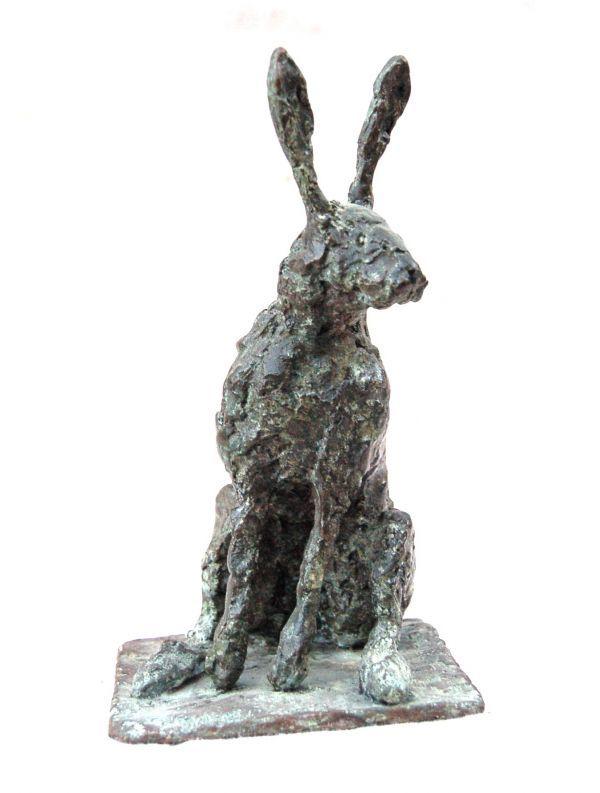Kinsella rabbit study