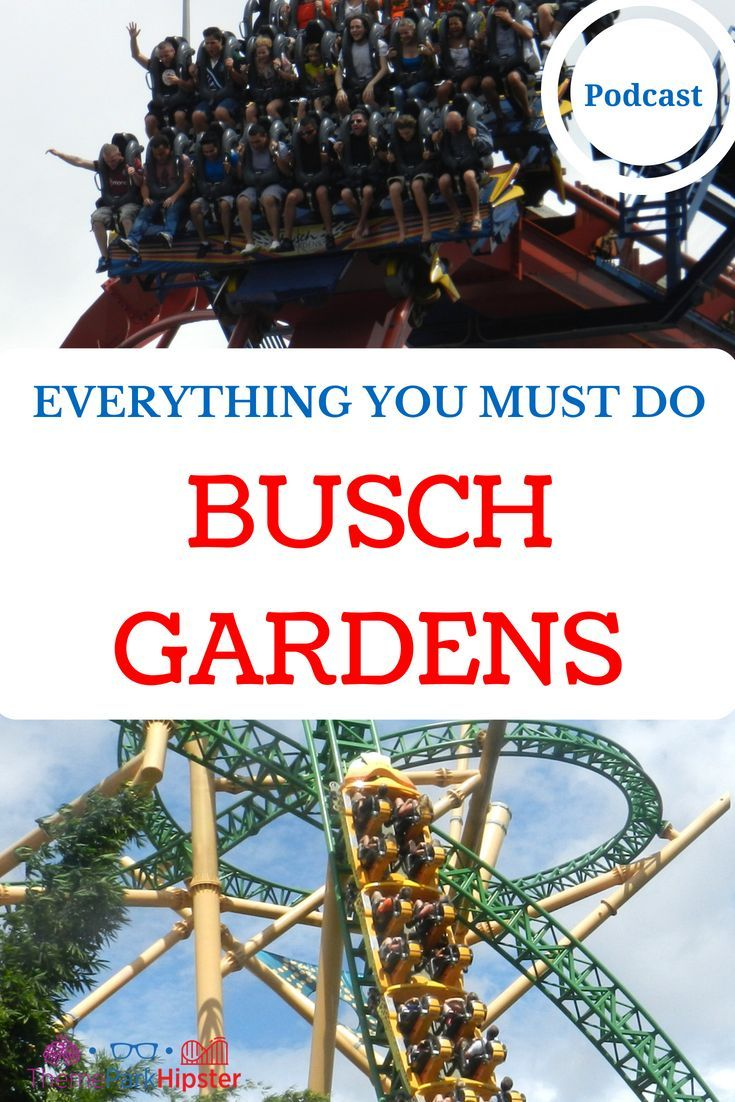 6f506a4cf85ad2b086bbe84980347d2d - Busch Gardens Tampa All You Can Eat