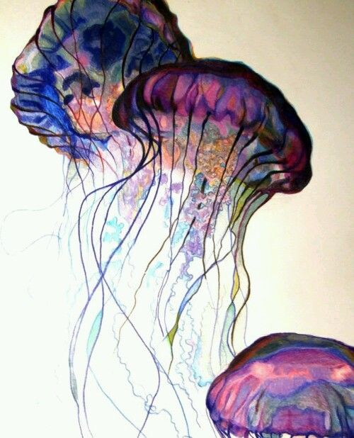Jellies - painting
