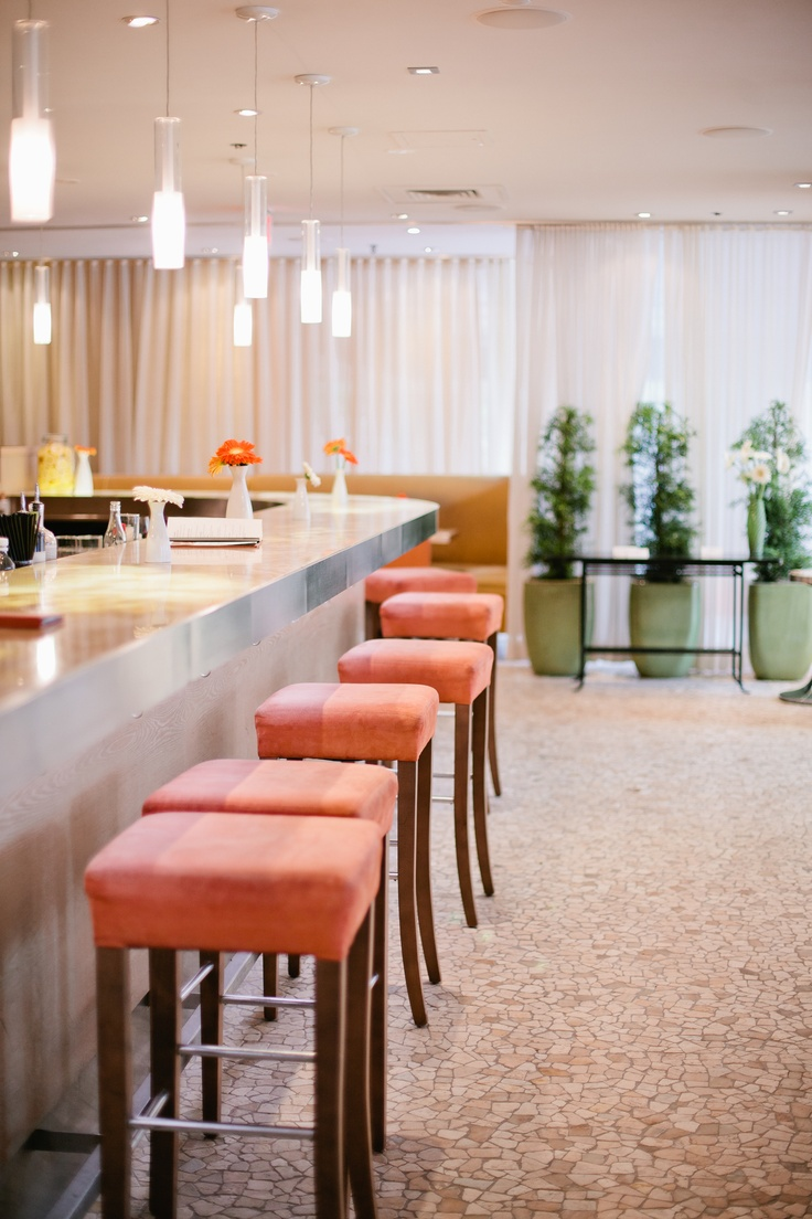 Bar at Rialto