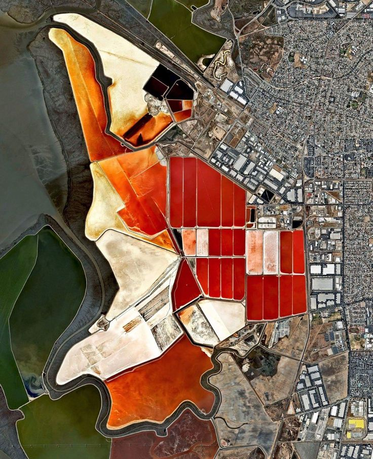 The salt evaporation ponds seen here cover roughly 10 square miles (26 square km) in San Francisco Bay, California. Salt is extracted from the water here through a lengthy process. First, water from the bay is channeled into massive basins where it begins a transformation into brines. Over five years, the brines evaporate, concentrate, and travel several miles before they are collected as pure salt crystals. The massive ponds get their vibrant color from a particular species of algae that…