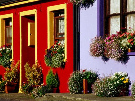 Cottage Facades Decorated with Flowers, Eyeries, Ireland Photographic Print by Richard Cummins