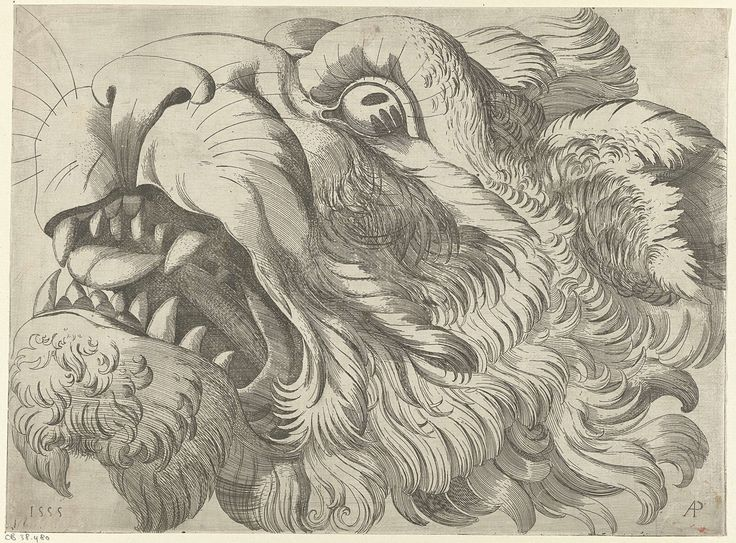Monogrammist AP (16e eeuw) | Kop van een brullende leeuw, Monogrammist AP (16e eeuw), 1555 |