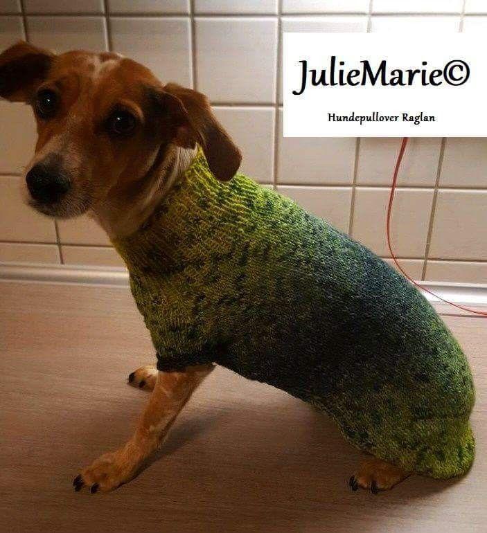 16 besten Hundepullover Bilder auf Pinterest | Deutschland ...