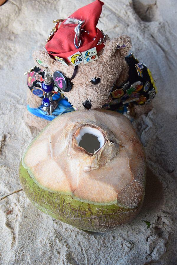 Jack Bearow und doe Kokosnuss am Strand Beau Vallon auf Mahe, Seychellen