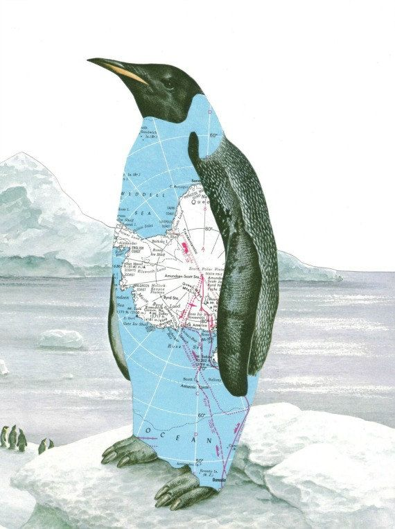 Paper Collage Art Print Penguin Art Antarctica Map Art Arctic Iceberg. $10.00, via Etsy.