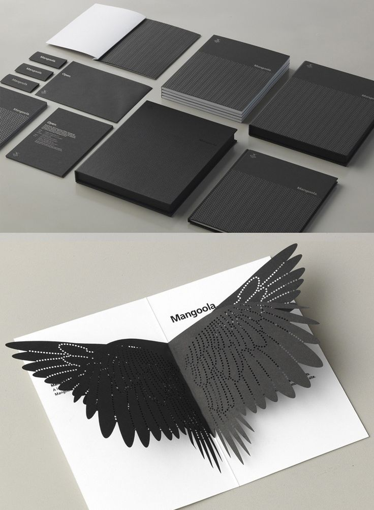 visual identity | Mangoola Branding by End of Work | #identity #papercraft #design #branding