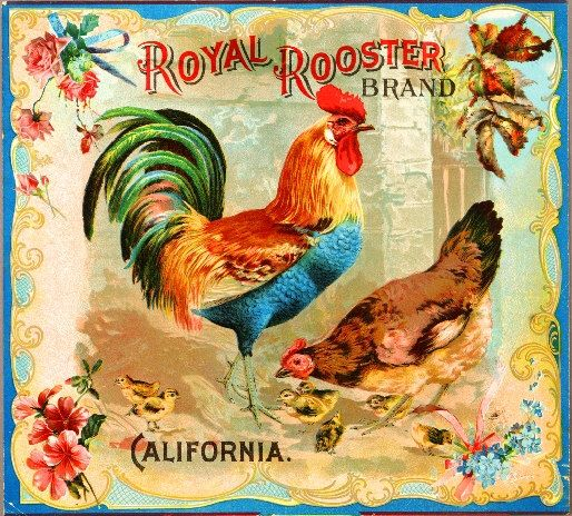 Riverside Royal Rooster Chicken Chickens Orange Citrus Fruit Crate Box Label Art Print. $9.99, via Etsy.