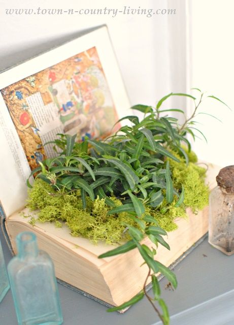 Rather than throw cheap books into the garbage, recycle them into a pretty planter. It's so easy!