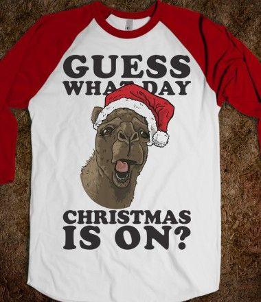 Guess What Day Christmas Is On? #humpday #camel #christmas