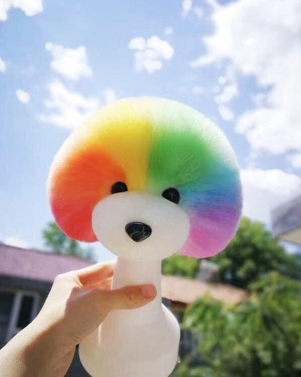Beautiful rainbow mushroom head style! Thanks for grooming