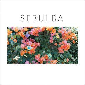 SEBULBA