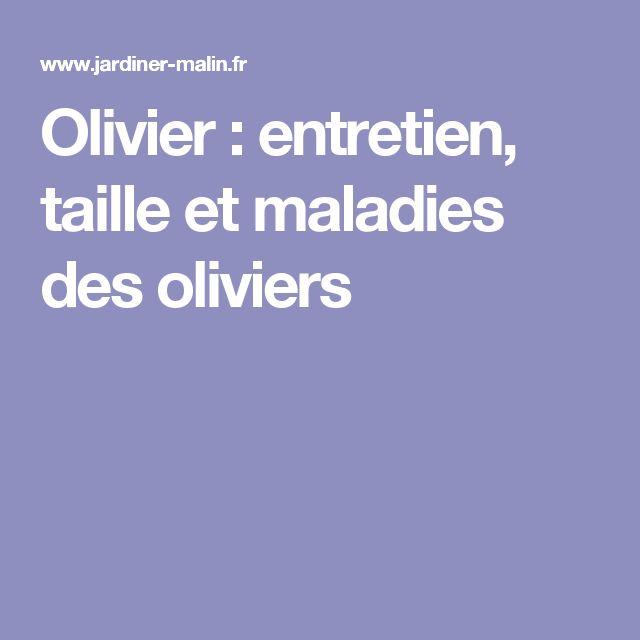 Les 25 meilleures idées de la catégorie Taille olivier sur ...