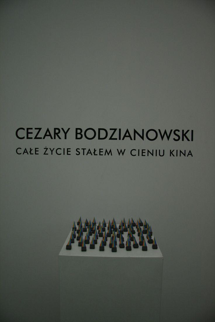 """Cezary Bodzianowski """"Całe życie stałem w cieniu kina""""   28.02.2014 - 30.03.2014   Galeria Labirynt, Lublin    fot. D. Kołczewska"""