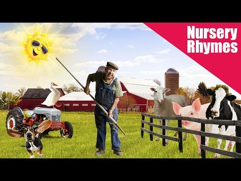 Old Macdonald Had a Farm - Nursery Rhymes for Children - Toddler - Kids - YouTube