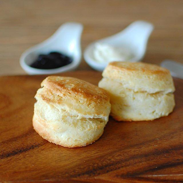 今日の朝食は、手作りスコーンにクリームチーズとブルーベリージャム♡ 昨日は薄力粉で、今日はリスドォルで焼いてみましたが、薄力粉のほうが好みの味でした。 #朝ごはん#朝ごぱん#朝食#手作りスコーン#スコーン#パン#クリームチーズ#ブルーベリージャム#おうちカフェ#おうちごはん#キナリノ#クッキングラム#blueberryjam#creamcheese#scone#homemade#breakfast#foodpics#foodie#foodphotography#onthetable#kurashiru#locari_kitchen