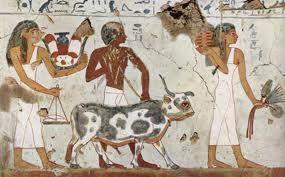 Los colores estaban cargados de simbolismos, el verde representaba la vida y la juventud, el amarillo era el simbolo de oro, el cuerpo de los dioses inmortales. el color menos habitual era el negro que se usaba en pelucas, el blanco era el predominante en el vestuario egipcio simbolo de la felicidad