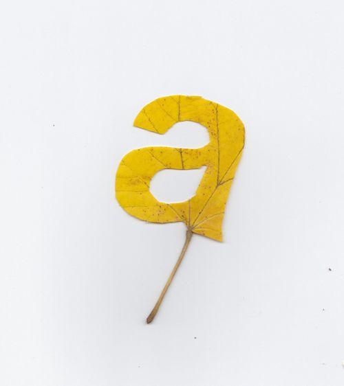 a • twan van keulen: Fall Leaves, Vans Keulen, Twan Vans, Leaf Letters, Graphics Design, Leaves Typography, Leaf Art, Fallen Leaves, Falling Leaves