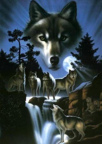 Alcateia de lobos em noite de lua cheia