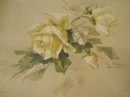 "Original Antique Catherine Klein Print Yellow Roses 11.50"" X 9.50"""