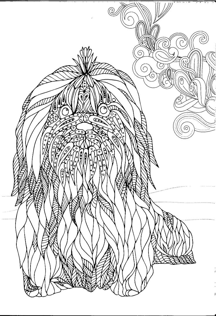 260 best Just Dogs images on Pinterest | Colouring pages, Coloring ...