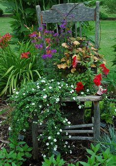 Old chair makes a beautiful container for lovely flowers......always get people talking, love this scene!!