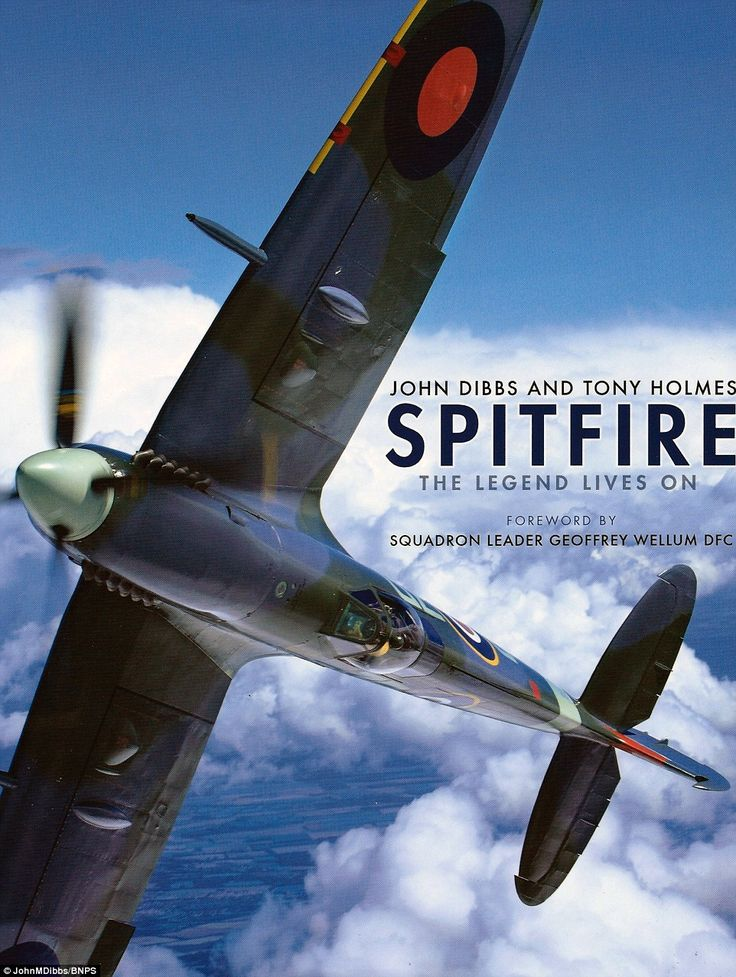 Souvenir: Mr Dibbs book is to honour the veterans who flew the Spitfires. The author said: 'There is no finer compliment than to have one tell me I have captured the spirit of the Spitfire in my photographs'