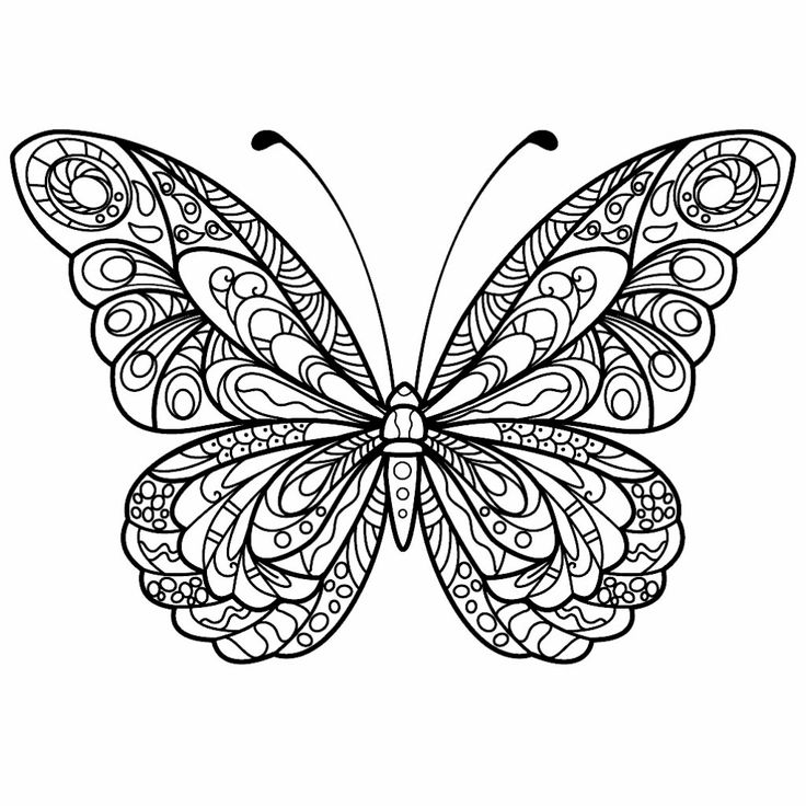 Pin by Kelly W. on Coloring Pages & Such | Butterfly ...