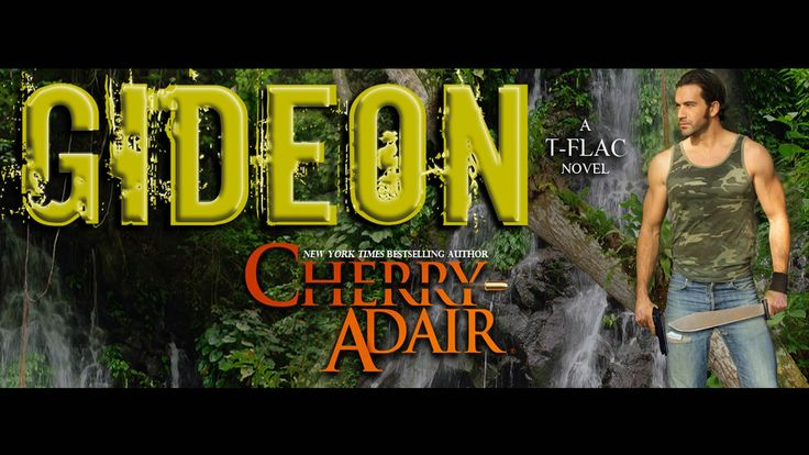 Gideon - A sequel to the award winning novel HUSH by author Cherry Adair.