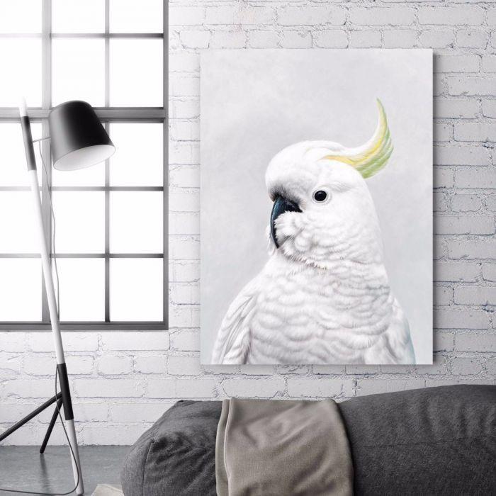 White cockatoo canvas art wall art art prints the store by fairfax