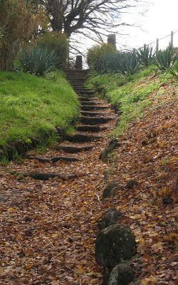 Kyneton Botanic Gardens