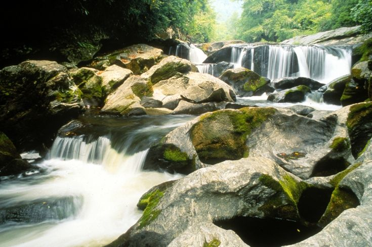 17 best images about south carolina special places on for Sumter national forest cabins