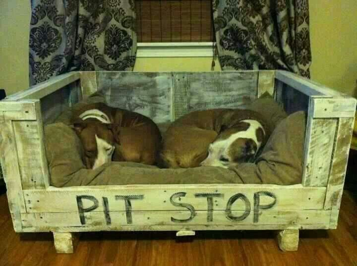 What a cute idea for a dog bed