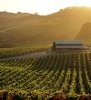 where to taste, eat and stay in Sonoma County, CA wine country