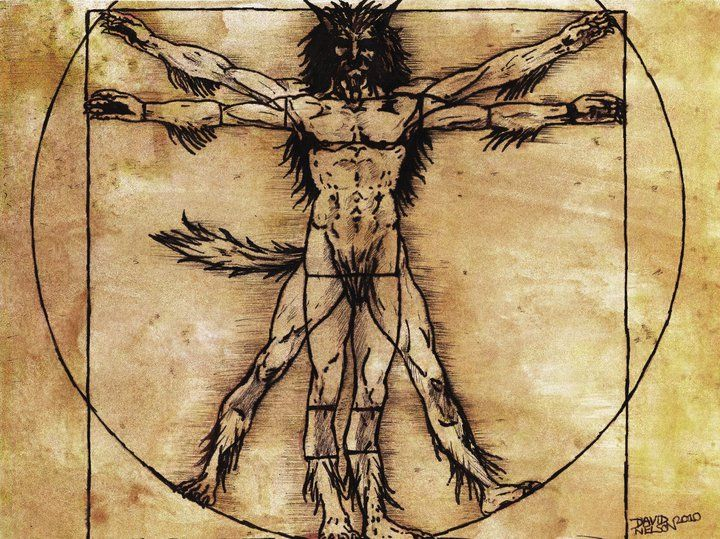 Vitruvian Man Skeleton | The vitruvian wolf by ...