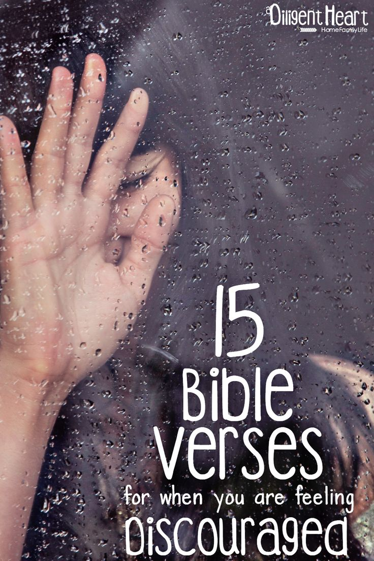 Do you ever feel like you just want to throw in the towel and give up? On what? anything that's overwhelming at that moment. I compiled a few verses that are sure to encourage you during these difficult seasons. 15 Bible Verses for when you are feeling Discouraged I adiligentheart.com