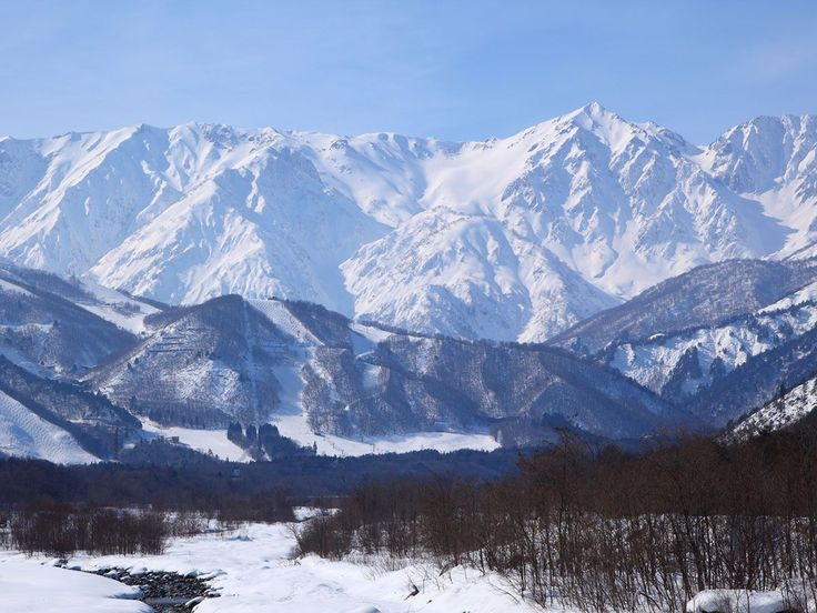 elk at hakuba | ski lodge hakuba accommodation japan